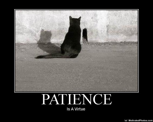 It Pays to be Patient!